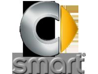 ЧЕХЛЫ ДЛЯ SMART (4)